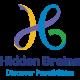 hidden-brains-infotech